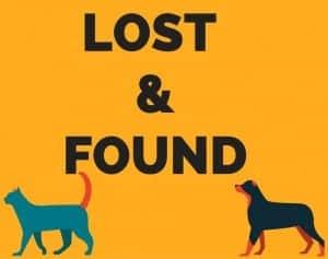 LOST &FOUND